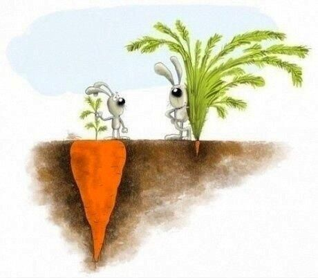 A volte si è invidioso del successo degli altri, sbagliato ed inutile.