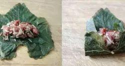 hojas-parra-Warak-Inab
