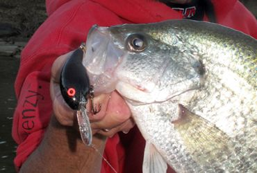 Best Fall Crappie Tactic