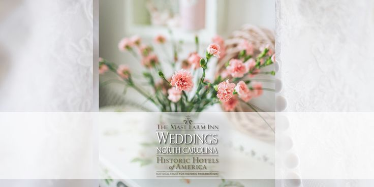 Contact, Weddings, Elopements, Honeymoons • Www