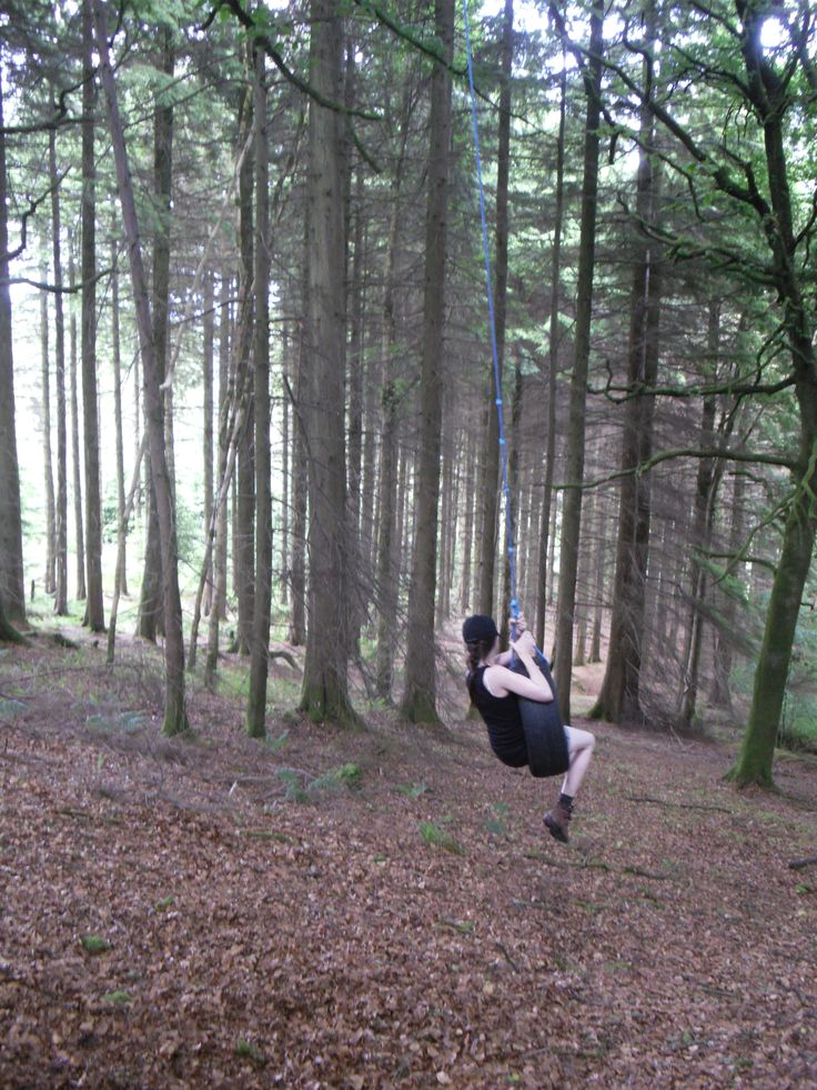 Ballyhoura Forest