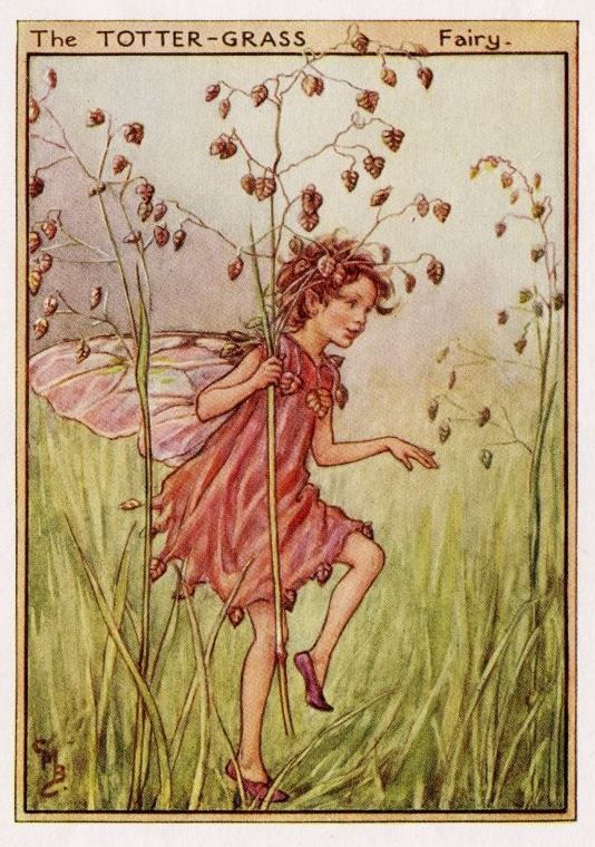 This beautiful Totter-Grass Flower Fairy Vintage Print by Cicely Mary Barker was printed c.1950 and is an original book plate from an early Flower Fairy book..Cicely Barker created 168 flower fairy illustrations in total for her many books.