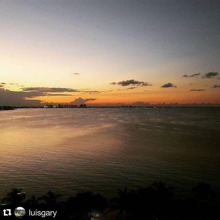 48 Best Dreams Sands Cancun Images On Pinterest