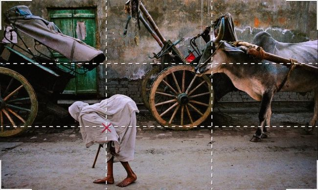 Nine rules for taking the perfect photograph