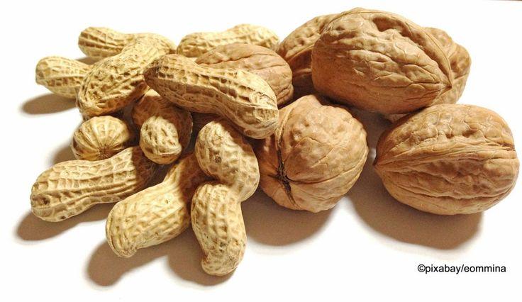 Nahrungsmittelallergien verstehen und vorbeugen