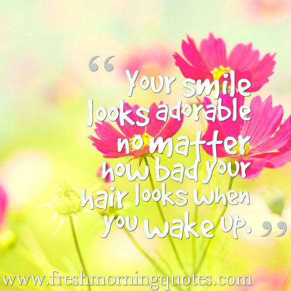 60+ Good Morning Quotes to Brighten Your Day - Freshmorningquotes