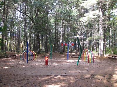 Manning State Forest Park Sprinkler Park In Billerica