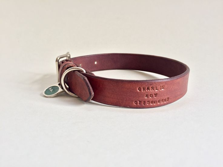 beautifully handcrafted leather dog collars, made in Cape Town, South Africa.