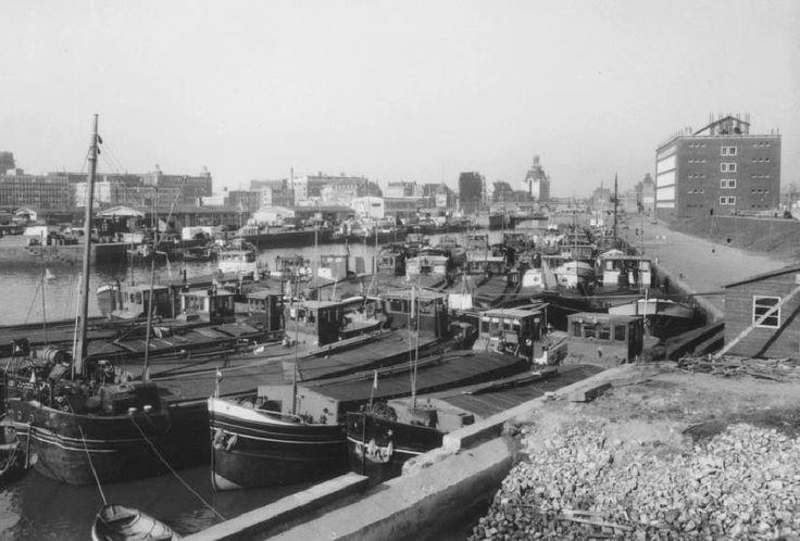 Rotterdam - Scheepmakershaven. . 1958