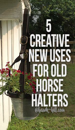 5 creative ways to repurpose old Horse Halters