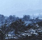 Gallery Winter Animated Gifs #winter #snow #ice #cold #gif #gifmania
