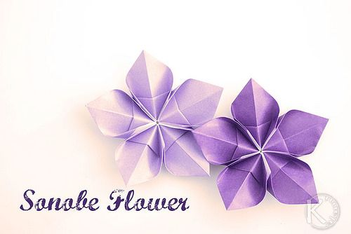 Sonobe flower folded by Kalami