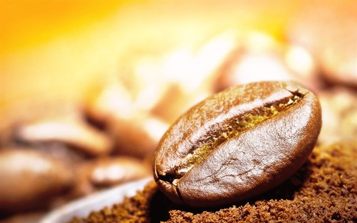 Download wallpapers coffee beans, close-up, coffee, roasted Coffee grains