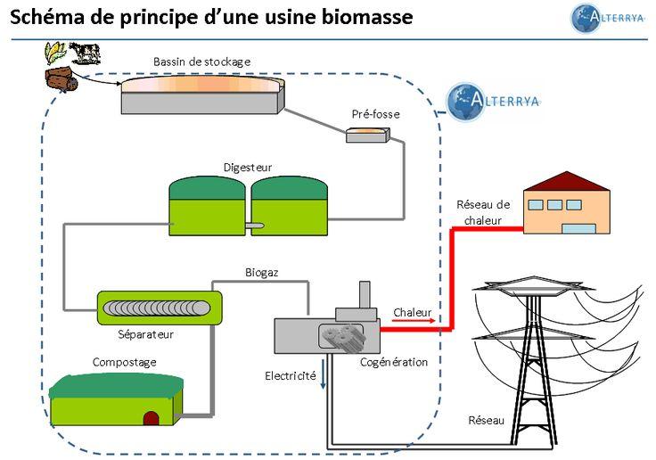 L 39 nergie biomasse sch ma de principe d 39 une usine - Principe de fonctionnement d une chambre froide ...