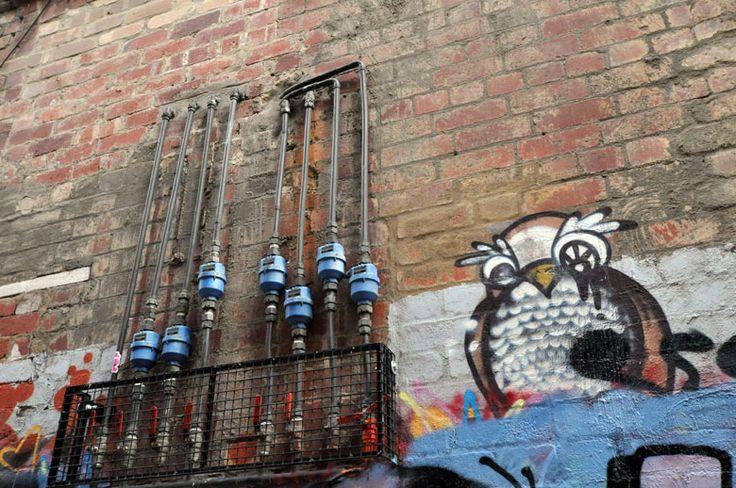 Dlux | Arte de rua | Graffiti | Artista | Amores da coruja | Corujas amor | Todas essas formas