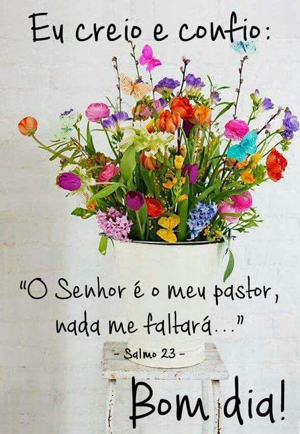 O Senhor é meu pastor...