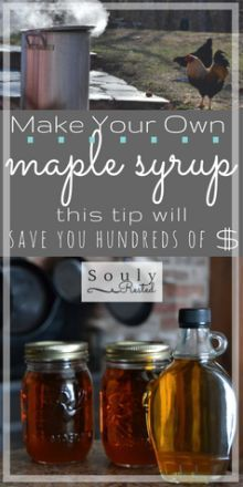 Save money on DIY maple syrup   reverse osmosis   backyard maple syrup   tapping trees for maple syrup   how to make your own maple syrup