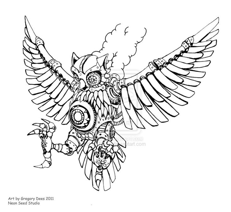 Steampunk Bird Sketches Images amp Pictures Becuo