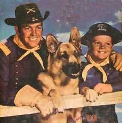 Rin Tin Tin, from the TV show.  I think this was RTTIV.  Rin Tin Tin (I), the movie star, was a black dog, and everyone who has a photo on this board knows how much easier it is to photograph a tan GSD > a black one.