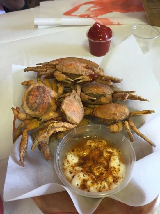 The Fat Crab - #seafood #budget #messyfood