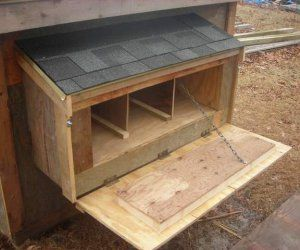 """Size: Nest boxes should be big enough for your hen to stand in comfortably  Nesting material: dry wood shavings over straw.  Often a roost bar or step is added in front of the box to give the hen a place to jump to before entering the nest box. Also a """"lip"""" is added to the front of the nesting box to keep the bedding material in place  make sure they aren't too high for the hens but not higher than the roosts or you'll have hens sleeping inside the nest boxes."""