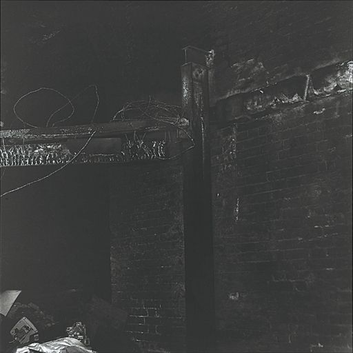 Artwork by Craigie Horsfield, Hare March, East London, May 1984, Made of gelatin silver print