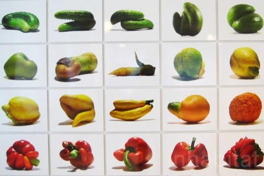 Food Culture: Eating by Design, Premsela, Marije Vogelzang, Eindhoven, The Netherlands, Food Design, Marti Guixe, Designhuis, Sustainable Food, Animals, Urban farming, Art, Botanical, social design, Green Products, Green Events, design academy of eindhoven,