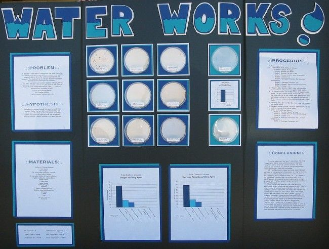 water science fair projects Participating in a school psychology club or creating experiments for a science  fair can nurture an interest in psychological science and cultivate an.