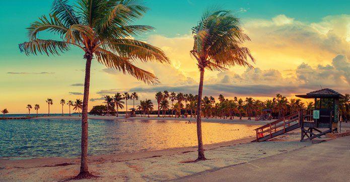 Reseguide till ett soldränkt Miami http://www.travelmarket.se/blog/reseguide-till-miami?utm_source=rss&utm_medium=Sendible&utm_campaign=RSS