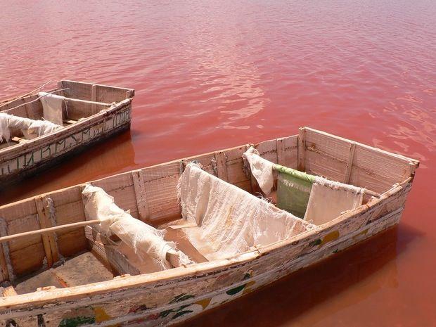 10 best lake retba images on pinterest lake retba senegal pink lake and salt. Black Bedroom Furniture Sets. Home Design Ideas