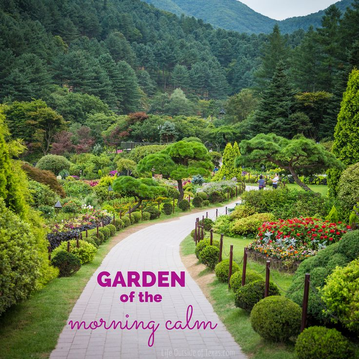 The Garden Of The Morning Calm Is The Most Beautiful Place I 39 Ve Been In Korea By