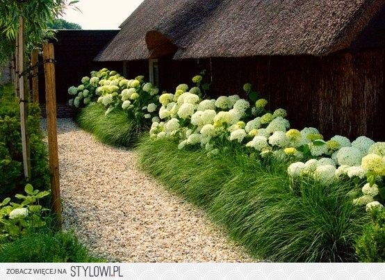 hortensje i trawy na Stylowi.pl