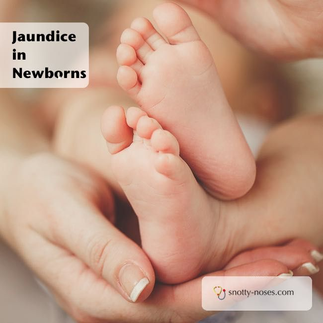 newborn care plans Read this essay on newborn nursing care plan come browse our large digital warehouse of free sample essays get the knowledge you need in order to pass your classes and more.