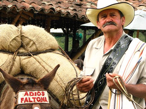 Arriero valle del Cocora- Colombia