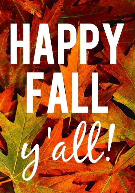 falling leaves. apple cider, hay rides, cocoa, pumpkins, apples, frosty morn's, sweaters, jackets, gloves, boots...