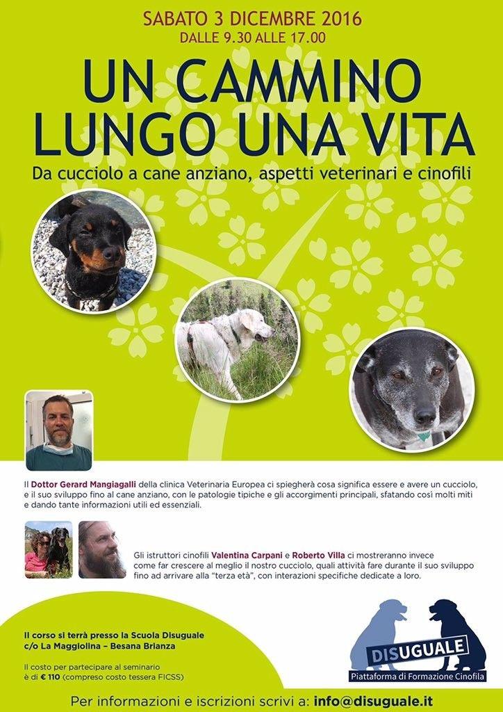 """Tutte le età del cane in un giorno: è """"Un cammino lungo una vita"""" :http://www.qualazampa.news/event/9411/"""