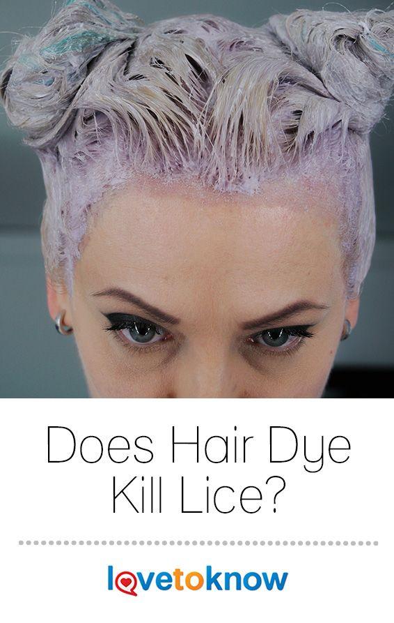 Does Hair Dye Kill Lice Hair Pinterest Hair Dye
