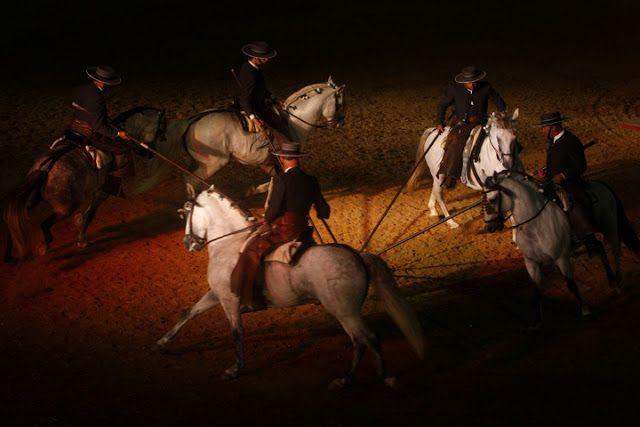 Peralta-Caballos PRE venta-Yeguada Pura Raza Español y CDE-Spanish horses-Elevage-Chevaux-Peralta: diciembre 2010