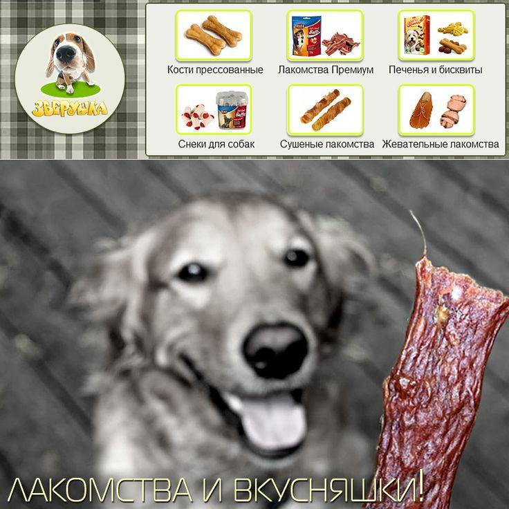 Жевательные косточки и лакомства для собак и щенков - https://zverushka.org.ua/sobaki-kosti-lakomstva-c-1_736  Специально разработанные жевательные кости помогают собаке стачивать зубы в том объеме, который естественно необходим, а также в процессе разгрызания происходит очищение зубной поверхности от налета, что является хорошей профилактикой образования зубного камня.  #собака #зоомагазин #зоотовары #киев