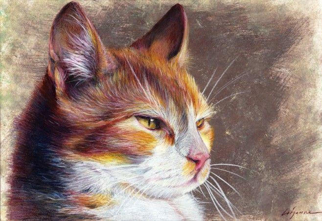 chat – crayon de couleur | Laure Simonin Peintures