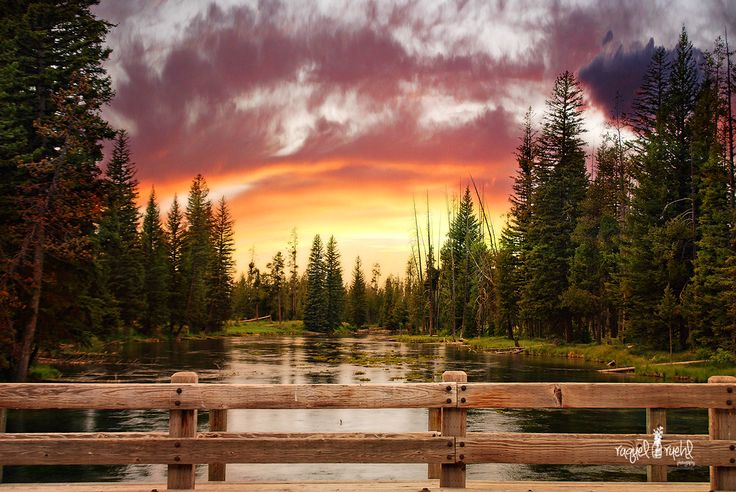 'Big Springs,' #IslandPark, eastern #Idaho, just 20 miles from West #Yellowstone. Well worth a visit. | Visitidaho.org
