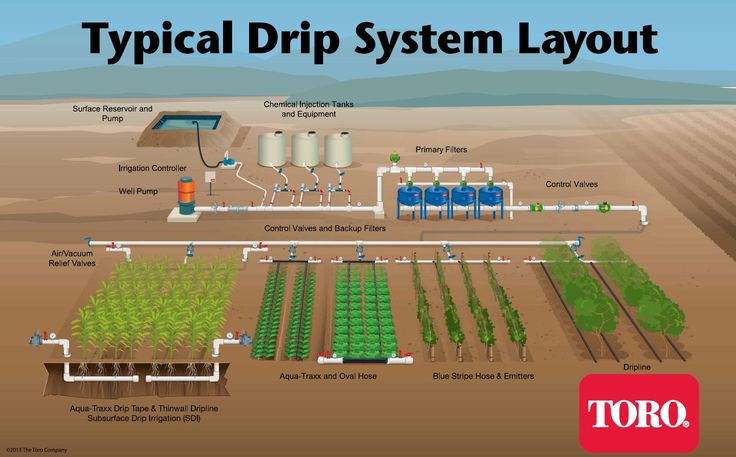 Typical Drip Irrigation Layout. Irrigation System DesignGarden ...