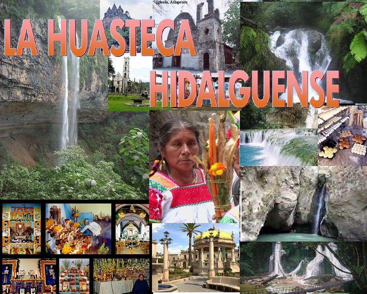 HuastecaHidalguense