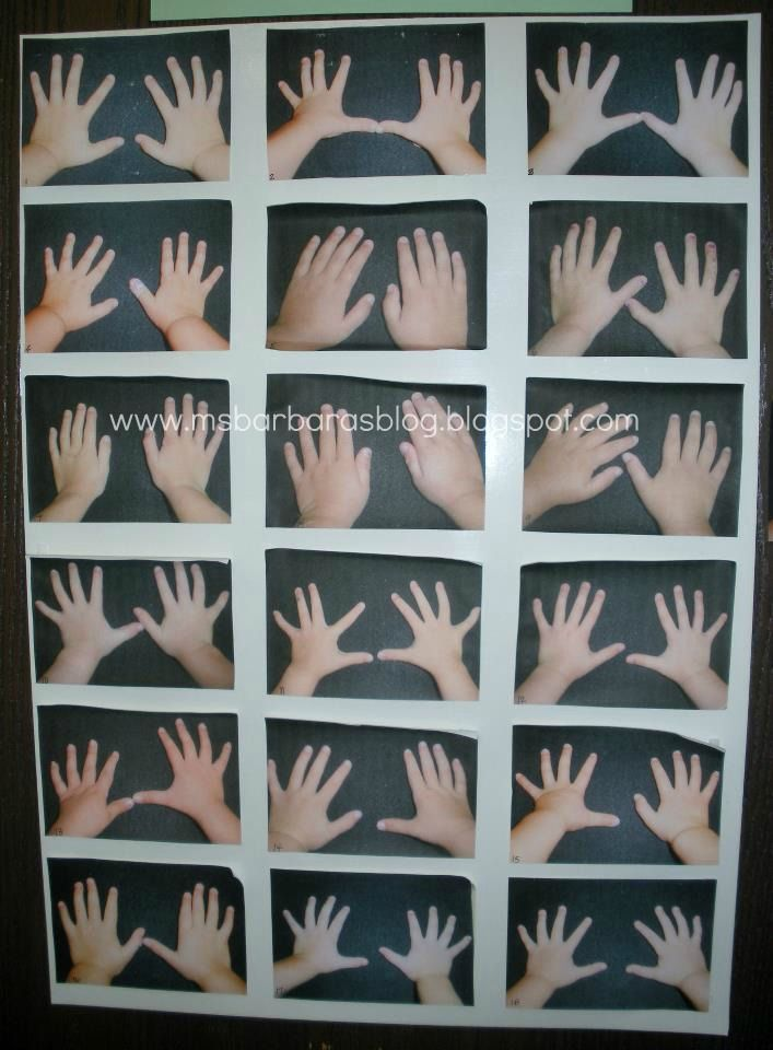 We Are All Alike...We Are All Different -  photograph hands and have parents guess their child