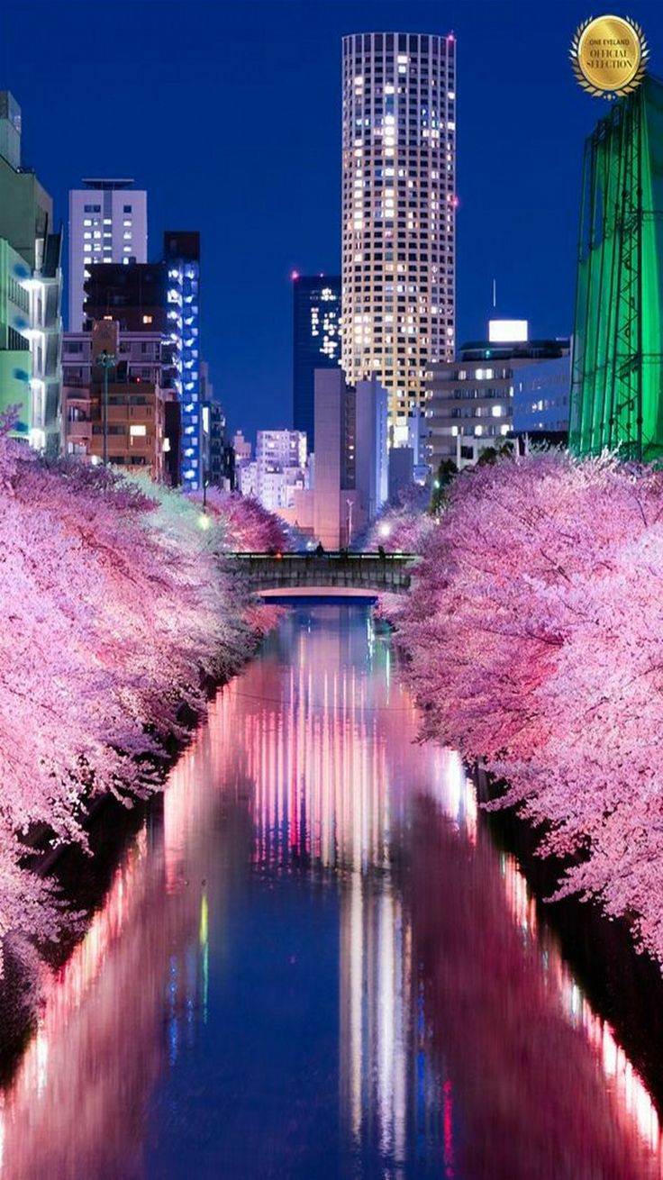 46 best toyko images on pinterest tokyo tokyo japan and asia rh pinterest co uk