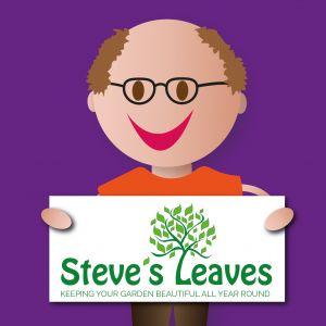 Steve with his Steve's Leaves logo