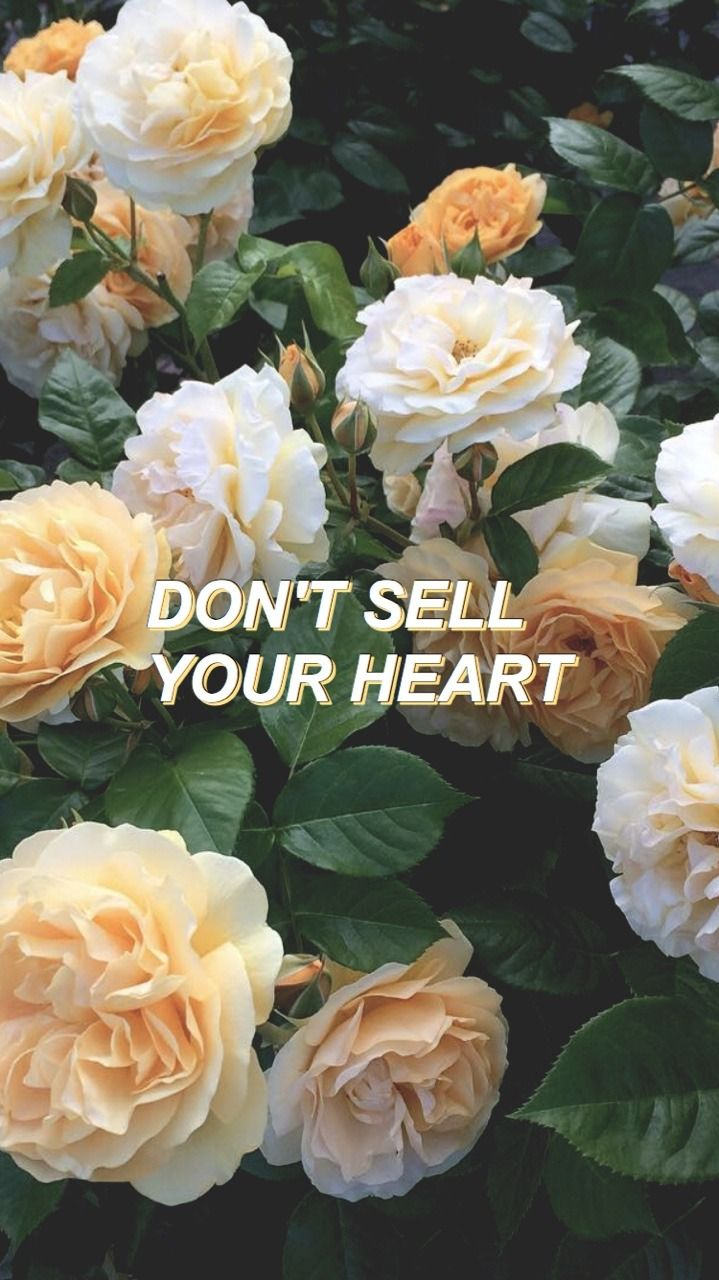 We The Kings Check Yes Juliet X Lockscreens We The Kings Aesthetic Iphone Wallpaper Wallpaper Backgrounds