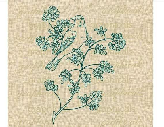 Teal bird branch flower drawing Digital download image for transfer to fabric decoupage  paper burlap pillows tote bags cards No. 567 on Etsy, $1.00
