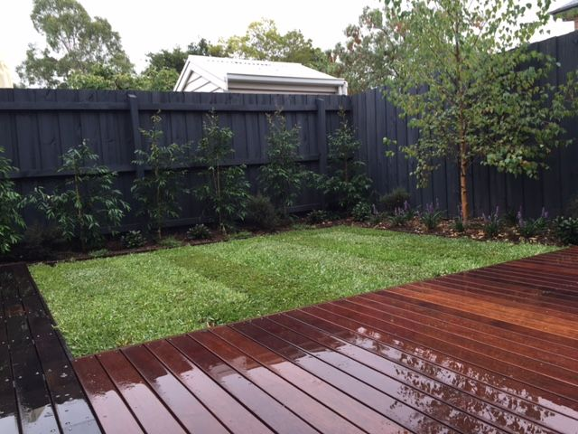 Botanical Space   Landscape Design U0026 Construction   Melbourne   Australia    Simple Clean Garden For