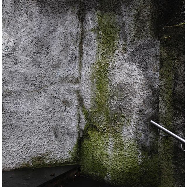 Textures and colors on one of the many walls in Oslo. You'll find these greens in our s/s17 collection too. #epilogueinspiration